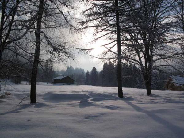 l ' hiver