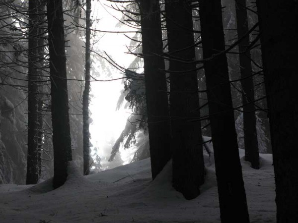 Lyse Mary - photographie surnaturelle 29